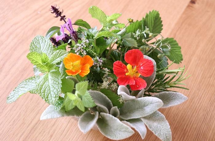 今回は私が今まで育ててきたハーブの中で育てやすい20種類をご紹介しました。  香りがあるハーブを育てると、水やりをする時に何気なく葉をさわって爽やかな香りを楽しめます。少しあると重宝するハーブを育てると、すぐに収穫して料理などに使うことができます。花が咲くハーブを育てると、ガーデンの彩りとしても、室内用の切り花としても楽しめます。  ハーブ類は見た目はそれほど華やかではありませんが、一年中どんな時も暮らしのそばにあってほしい植物です。  高温多湿に弱いハーブは、収穫をかねて刈り込む。葉を柔らかく育てたいハーブは、猛暑の直射日光を避けて夏は半日陰で育てる。などのポイントをおさえて、そのハーブにとって好ましい環境をつくってあげられるように日々よく観察して育てると、ハーブと仲良くなれると思います。  ぜひ、お庭やベランダでハーブを育ててお楽しみください。
