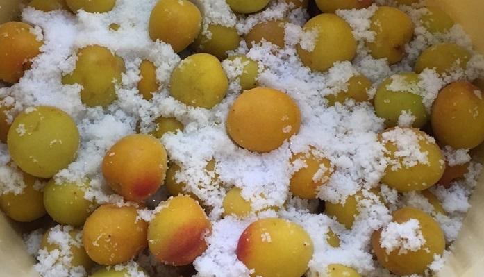 アルコールで殺菌消毒した保存容器に完熟梅と塩を交互に入れていきます。  塩の分量は生梅の状態の重さの15~20%の重さを用意します。