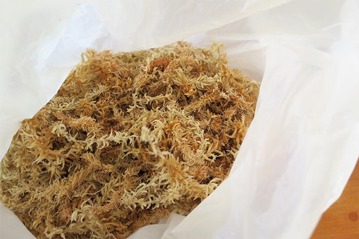 余った場合はビニール袋で保存ができます。次使うときに乾燥していたら再度水につけて使用してください。