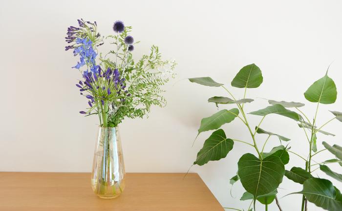 これから、じりじりと暑くなる夏。室内の雰囲気に合わせたフラワーベースと一緒に、お好みの夏の花あしらいを見つけてみてください!  そして、今回の撮影の様子や前田さんの花生活の様子は、後日アップしますのでお楽しみに!