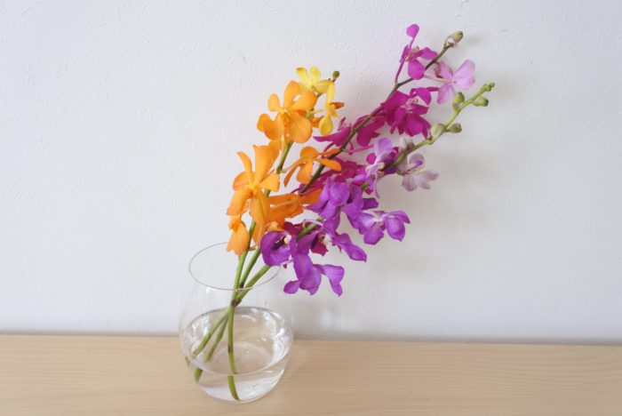 花瓶に3~5センチの浅めの水に生けます。ランは他のトロピカルフラワーよりは水の吸い上げが悪いため、すぐに萎れてしまうようであれば少し水を深くしましょう。