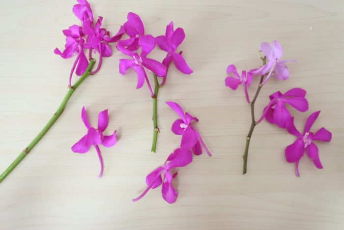 花瓶に入ってしまう部分の花は傷みやすくなるので取り除きましょう。