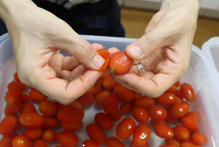 冷凍しておいたミニトマトを水に浸けると、皮にひびが入り、つるんと簡単に皮をむくことができます。 皮をむいた方が断然美味しいので、皮をむくことをおすすめします。