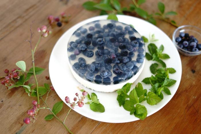 収穫したブルーベリーで2層のレアチーズケーキを作ってみましょう。  今回は丸ごとのブルーベリーをゼリーの中に閉じ込めて、残暑を楽しむような涼やかなケーキを仕上げます。  このレシピは季節を楽しみたい時にどんな季節でも大活躍!一度作り方を覚えたら、ゼリーの中の果実を変えるだけで、色々な季節にも楽しむ事が出来ますよ。是非お試し下さい。