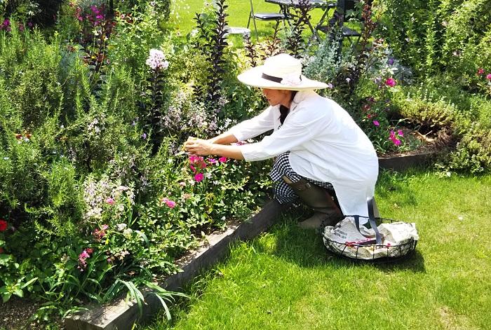 庭の持ち主が心地よく感じることは何か?を考えます。特に個人庭の場合は育てる人の手によって植物の様子が変わるので、庭と暮らして庭を育てていく持ち主のライフスタイルや植物へのこだわり方とすり合わせながら作ります。