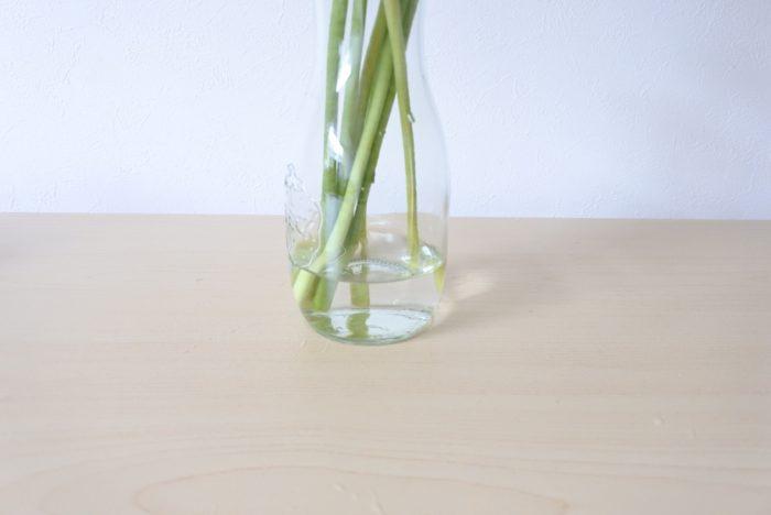 """水についた部分は腐りやすくなるため、茎が2~3センチ浸かる程度の浅めの水に生けて、こまめに水換えをしましょう。水換えの際は、茎を1センチほど切り戻すと、切り口が新しくなり、水の吸い上げが良くなります。  ▼家に帰ってきた時にしんなりしてしまっていたら「水揚げ(みずあげ)」をしましょう。  <div class=""""posttype-post shortcode""""><div id=""""posts"""" class=""""default-posts""""><article><a href=""""https://lovegreen.net/flower/p81881/"""" class=""""clickable""""></a>     <div class=""""thumbnail"""" style=""""background-image:url(https://lovegreen.net/wp-content/uploads/2017/03/2017032013.jpg);"""">         <a href=""""https://lovegreen.net/flower/p81881/""""></a>   </div>   <div class=""""top-post-ttl-extext"""">     <h2><a href=""""https://lovegreen.net/flower/p81881/"""">しおれてしまった花を復活させるテクニック!</a></h2>     <p><a href=""""https://lovegreen.net/flower/p81881/"""">謝恩会、卒業式、送別会・・・春は花を贈ったり、いただいたりする機会が多い季節です。 いただいた花束は、花束を…</a></p>     <p class=""""top-post-name"""">金子三保子</p>     <time class=""""top-post-date"""" datetime=""""2018-02-21"""">2018.02.21</time>     <span class=""""post-cat""""><a href=""""https://lovegreen.net/flower/"""">花</a></span>  </div> </article></div></div>  ▼水揚げでも元気にならない場合は「湯揚げ(ゆあげ)」をします。  <div class=""""posttype-post shortcode""""><div id=""""posts"""" class=""""default-posts""""><article><a href=""""https://lovegreen.net/flower/p12033/"""" class=""""clickable""""></a>     <div class=""""thumbnail"""" style=""""background-image:url(https://i.ytimg.com/vi/Svl2dfhEIh4/hqdefault.jpg);"""">         <a href=""""https://lovegreen.net/flower/p12033/""""></a>   </div>   <div class=""""top-post-ttl-extext"""">     <h2><a href=""""https://lovegreen.net/flower/p12033/"""">ガーベラを最後まで楽しむ方法・すぐ枯れそうになったことない?</a></h2>     <p><a href=""""https://lovegreen.net/flower/p12033/"""">お花屋さんで彩り鮮やかに店頭に置かれる人気のガーベラ。一年中を通して購入する事が出来ます。 鮮やかな色どりの…</a></p>     <p class=""""top-post-name"""">峰亜由美</p>     <time class=""""top-post-date"""" datetime=""""2019-01-10"""">2019.01.10</time>     <span class=""""post-cat""""><a href=""""https://lovegreen.net/flower/"""">花</a></span>  </div> </article></div></div>"""