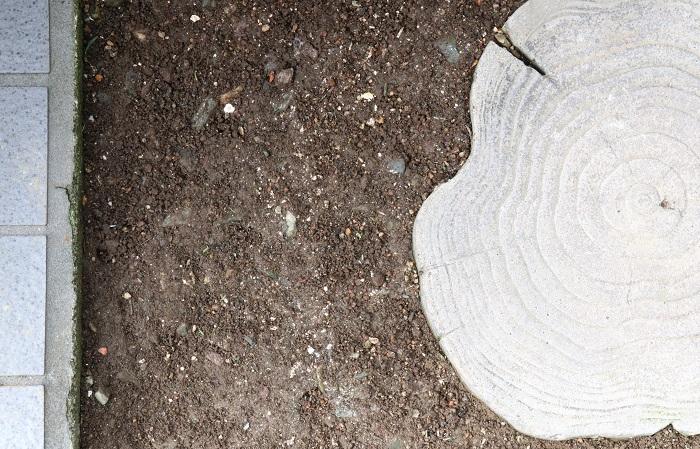 庭の小さなスペースの、飛び石周りのグランドカバーとして、セダムを植えてみることに。