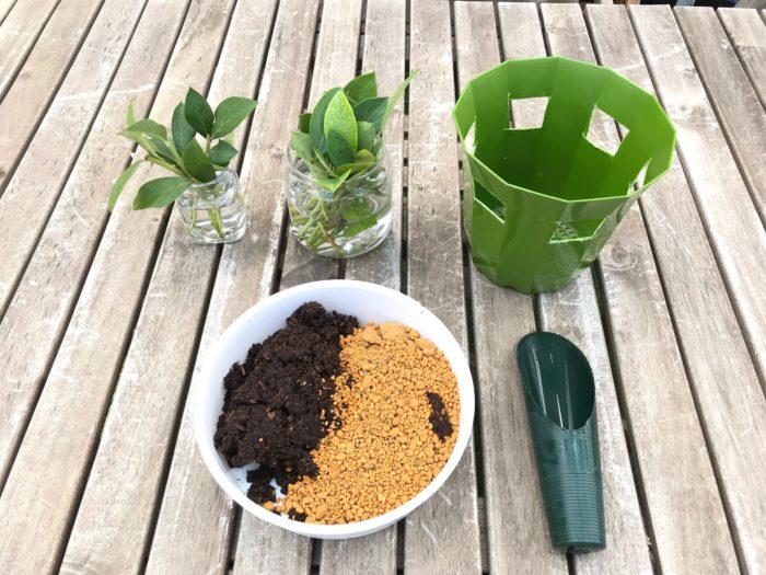 準備するモノ ・ピートモス ・鹿沼土 ・植木鉢(柔らかめ) ・サランラップ或いはビニール袋 ・輪ゴム