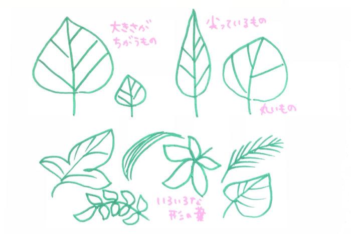 葉の形にも丸いもの、尖っているもの、大きいもの、小さいもの、ギザギザとしているものや、分かれているものなどいろいろな形がありますね。大きく丸い葉と草のように長く細い葉を組み合わせるなど、違う形のものを組み合わせると変化を出しやすいです。