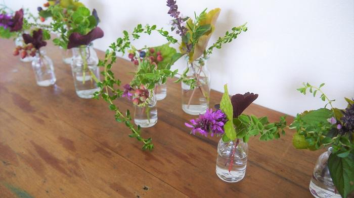 お庭で摘んだヒューケラを使ってお花を生けてみませんか。形も色もバリエーション豊富なヒューケラは名脇役として活躍してくれます。会社のテラスの花壇から摘んだ、ヒューケラとお花たちを使って生けてみました。