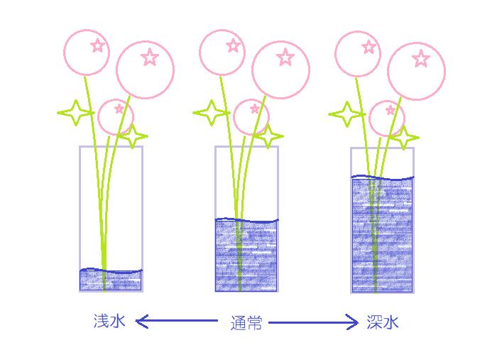 基本的に水の吸い上げが良いもの、茎が柔らかく腐りやすいものは、花瓶に数センチ程度の浅めの水=浅水(あさみず)に生けます。今回ご紹介する花の中で浅水に向くものはガーベラ、カーネーション、カラーです。他にはアリウム(ネギボウズ)やチューリップ、ヒヤシンスのような球根植物などは浅水に生けましょう。  水の吸い上げが悪いものは花瓶にたっぷりの深めの水=深水(ふかみず)に生けましょう。今回ご紹介する花の中で深水に向くものはバラです。他にはアジサイや草花など、すぐに花がしおれてしまうものは深水に生けましょう。  どちらでもない花は、全体の長さの1/3程度の深さの水に生けましょう。また、他の花に合わせたり、花の状態を見てすぐにしおれてきそうなら水を深めにするなど調整をしましょう。  また、夏場は水に浸かった部分の茎が腐りやすくなるため、「どちらでもない花」もできるだけ浅めの水に生けます。30センチ以下の長さのものは数センチ、7~80センチの長いものでも10センチ程茎が浸かる程度の水量にしましょう。気温が高いと水が汚れやすく、雑菌が繁殖すると茎が腐る原因になってしまうため、こまめに水換えをするようにしましょう。