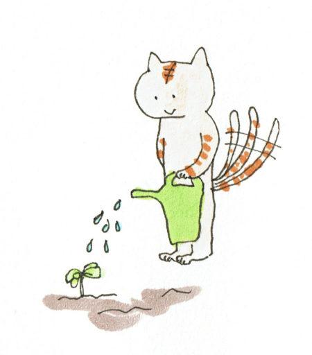 〜水やり〜 種をまいた時はしっかりと水を与えますが、基本的に乾燥気味に育てます。畑で育てている方は降水による水やりを基本に、よほど乾燥したときは様子を見て与えましょう。プランター栽培の方は、土が乾いたらしっかりと水を与えます。