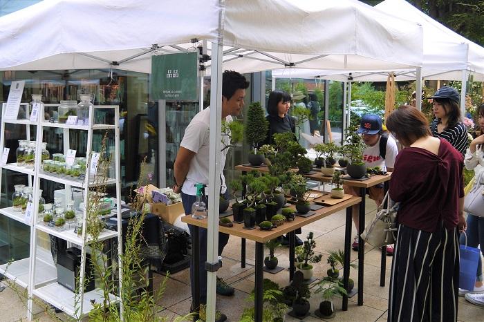 今回のイベントにもたくさんの景色盆栽やテラリウムが並んでいました。景色盆栽のいいところは、その小さな盆栽の中でトータルコーディネートが出来上がっているところだそうです。  さらに大きくしないで管理するので、都市生活に馴染み易く、その楽しみ方は観葉植物にも応用が活かせるといいます。