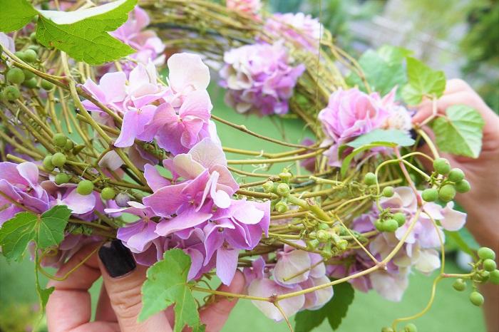 アジサイ、セルリアなどお花を入れ終わったら、最後にツル植物を回しかけます。ツル植物を入れることで、リースの円形が強調されて、より軽やかできれいな丸いリースが出来上がります。今回は、そのままドライに出来るヤマブドウを使用しました。  最後の仕上げは、必ずリースを吊るした状態で行いましょう。全体のバランスを見ながら、ヤマブドウのツルをぐるりと回しかけていきます。