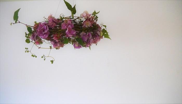 フフライングリースとは、通常の壁にかけて楽しむリースと違い、上から吊るして楽しむタイプのリースのことです。上から吊るして飾るので、下垂するものや躍動感のある花材を使って、遊びの多い仕上がりになります。  せっかく宙に吊るして楽しむのですから、軽やかなシャンデリアのような趣のあるリースを作ってみましょう。今回は今がきれいな秋色アジサイでのフライングリースの作り方です。そのままドライになる花材ばかりなので、飾りながらドライになっていく過程も楽しめます。