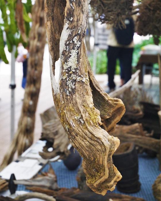 並んでいるドライの枝や流木たちは、何に使ったらいいのかわからないようで、自分次第で何にでも姿を変えてくれる可能性を持つものばかり。枯れた枝にイマジネーションを刺激されます。  オーナーの渡来さんの「山のものを無駄にしない」という言葉に含まれたメッセージも素敵でした。