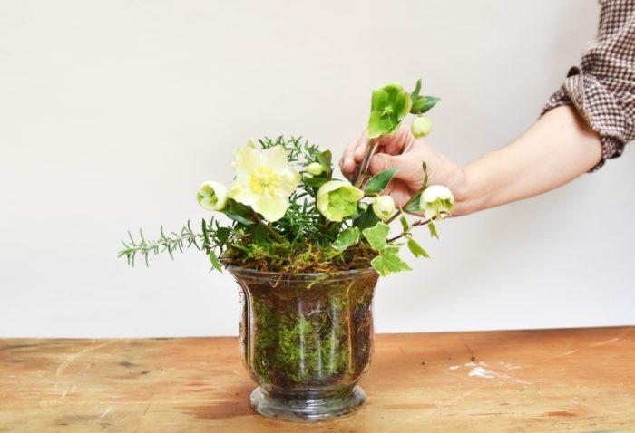 最後にはクリローの切り花としての楽しみ方を紹介。繊細で可憐な花が室内でも観賞できるとより、クリローのことが好きになっていきます。ぜひ真似していただきたい簡単アレンジです。