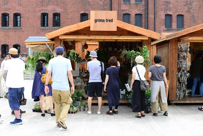 横須賀 田浦の工房でお教室を開催、個人さまから店舗さまのグリーンコーディネートやデザインなどをしています。  オーナーの新井さんは、仕入れから装飾、ワークショップまで多岐にわたって活動していらっしゃいます。 毎回イベントに出る度に、こだわりの一押しの植物を並べているので、様々なイベントで新井さんにお会いすると、「今回は何がおすすめですか?」と聞くのが楽しみです。