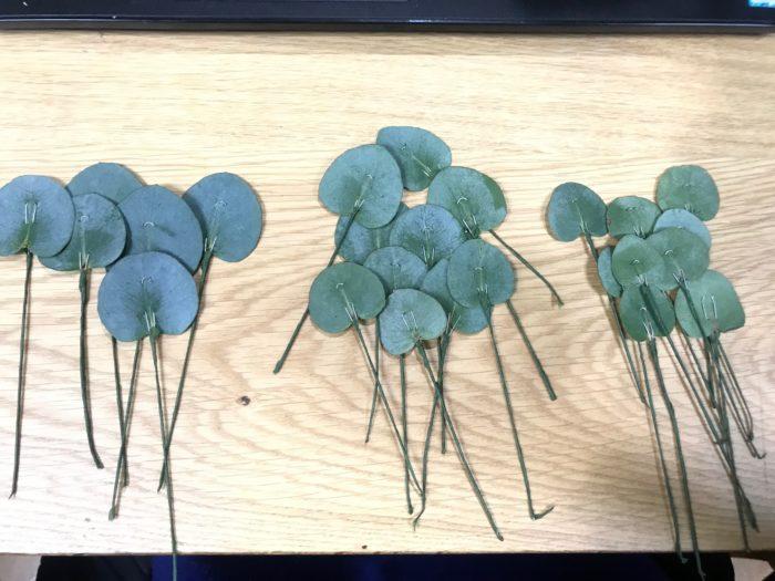 大、中、小と大きさの違うユーカリの葉を各5~10枚程準備し、ワイヤリングとテーピングをして行きます。