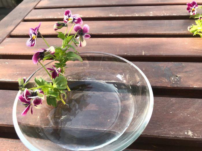 ビオラはガラスの器に水を入れて添わす様に、一本ずつ生けていきます。器いっぱいにビオラを寄り添わす様に生けてみましょう。色々な方向に向いても自然でかわいらしいと思います。