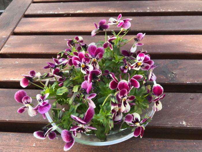 器いっぱいに生けたら出来上がりです。テーブルの上に小さなお花畑を飾ったみたいに、お部屋に春を運べます。