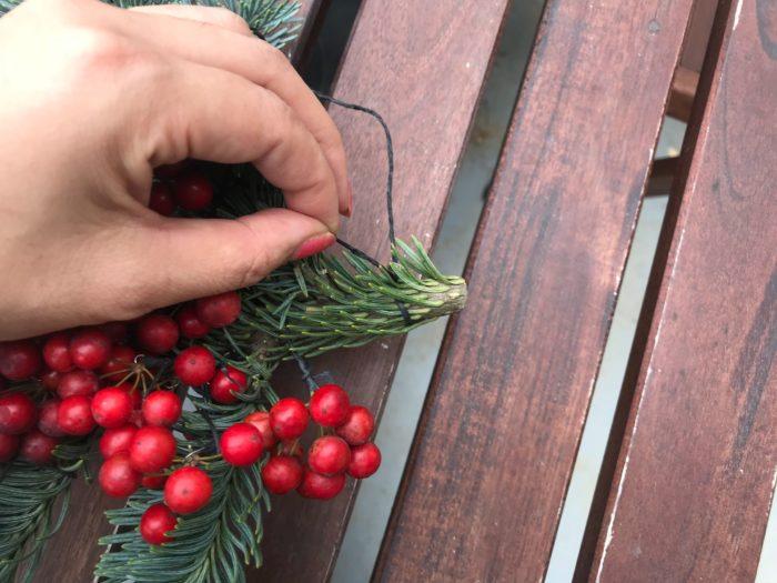 山帰来(さんきらい)を着けたら、もみの木の枝の端に紐を結びつけます。