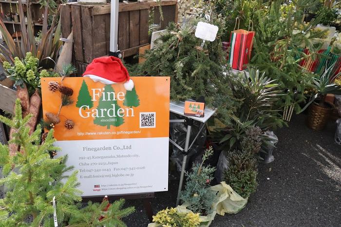 ファインガーデンさんには、クリスマスツリーなどの針葉樹を中心としたガーデン用の樹木が並んでいました。千葉県松戸市からのご出店です。