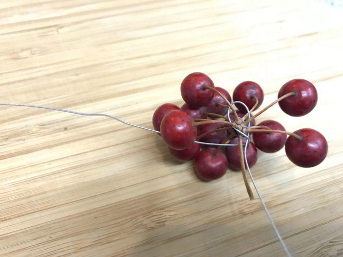 U字に折り曲げたワイヤーの片側を山帰来(さんきらい)の茎に対して並行に添わせ、もう片側のワイヤーで茎と茎に添わせたワイヤーを一緒にグルグルと数回巻きます。