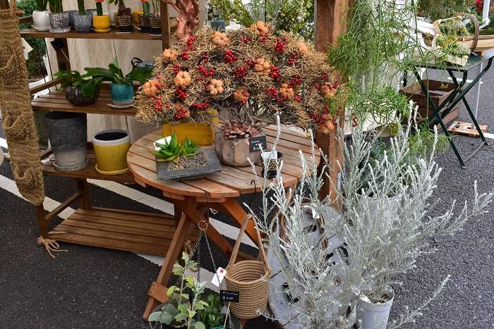 コットンフラワーと山帰来の赤い実を飾った大きなオブジェは、今回の出店に合わせて作られたそうです。とっても素敵でした。