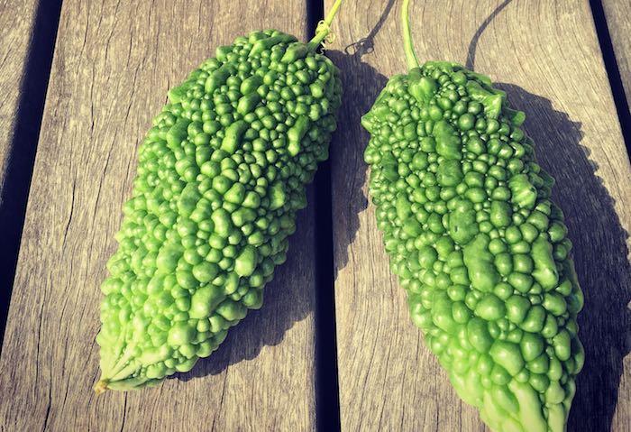 何と言っても採れたての野菜に敵うものは無い!無敵の素材「採れたて野菜」を思う存分お楽しみください。