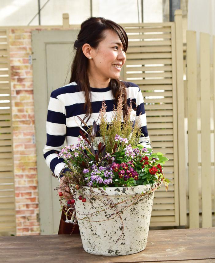 今回は冬のシーズンにぜひ楽しんでいただきたい「実もの」の寄せ植えを間室みどりさんに教えていただきました。おすすめはとびきり可愛いクランベリーと、四季咲きのワイルドストロベリー。クリスマスシーズンにもピッタリです。