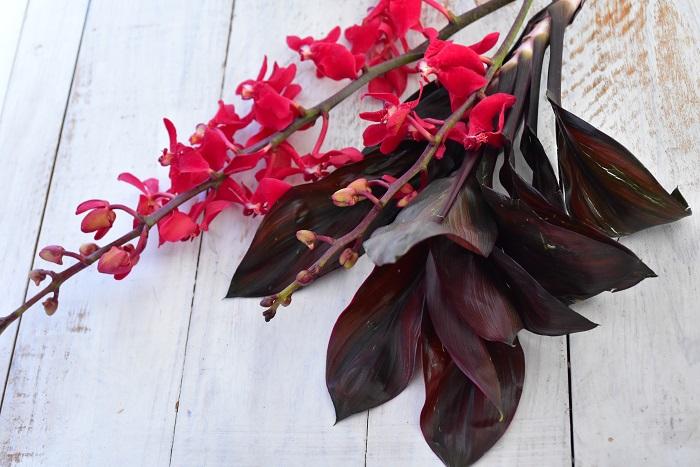 ドラセナ  どちらも南国の植物なので相性も日持ちも抜群です。