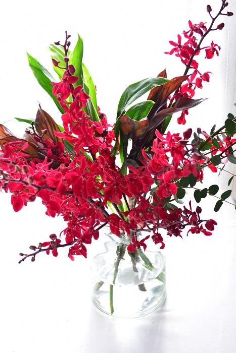 アランダ4本、ドラセナ2種合計3本、グニユーカリの花あしらい  ほとんどの切り花のランは一本の茎の形状ですが、アランダはスプレー咲きのランなので、少ない本数でも豪華に見えるランです。