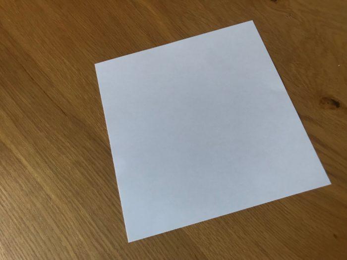 紙垂は奉書紙や美濃紙、半紙を使って、独特の裁ち方をして折られた紙で、その断ち方は色々な流派がありますが、どの流派も階段のようにギザギザとした形に折られます。形の意味は雷の光や稲妻を意味していて、落雷があると稲が豊作になる事からこの形になったといわれています。また落雷で邪気を祓うという意味を込められている為、鏡餅につけた場合は厄払いの意味が込められ飾られています。  鏡餅ではない場所でも、神社仏閣などで見かける事もあると思いますがこの場合は厄払いの意味とは違い、聖域を表す紙として使われているようです。