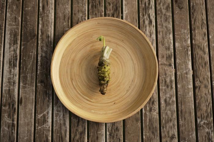 ・アブラナ科ワサビ属  ・原産国 日本  ワサビは飛鳥時代から薬用として使用されている薬味です。江戸時代初期に徳川家康に献上され、この頃からワサビは栽培されはじめました。江戸時代後期に栽培も盛んになり、お寿司や蕎麦の薬味として使用され始めたのも、この頃からと言われています。