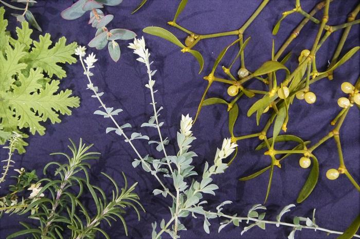 ・ヤドリギの枝  ・ブルーファンタジア  ・ゼラニウムや月桂樹など、大きな葉  ・ローズマリーやラベンダーの枝  ・ロータス・プリムローズやタイムなど、動きのある小枝  ・針葉樹の小枝もあれば