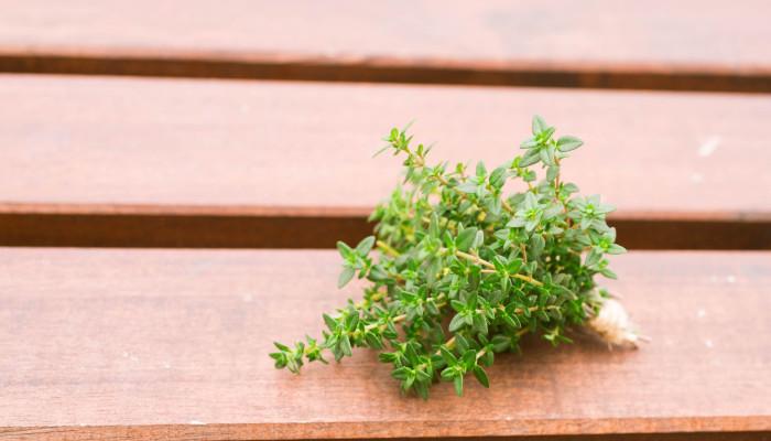 タイムはシソ科の多年生の低木(亜低木)です。300種以上もあると言われているタイムには、グラウンドカバーなどにもされる匍匐(ほふく)性の種類と、立性のものがあり、淡いピンク色や白色などの花をつけます