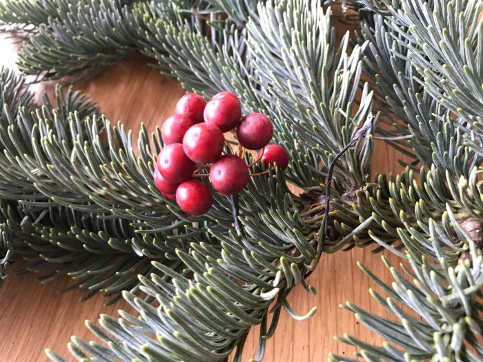 もみの木にワイヤーを巻きつけ、取れない様に固定します。