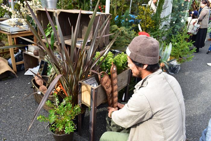 お店の方が手にしているのは、南半球からやってきた植物の種。これだけでかっこいいオブジェになりますね。