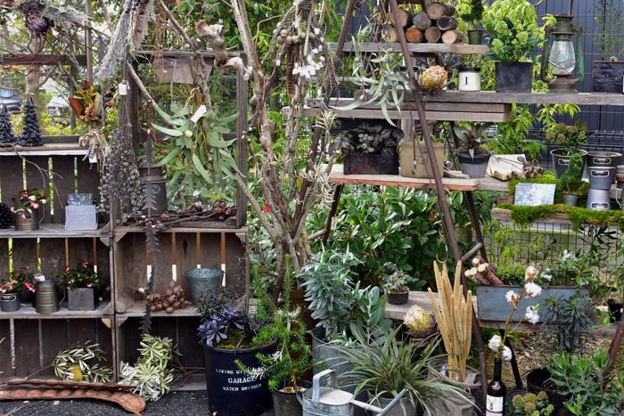 名古屋、豊橋、浜松に店舗があるgarageさん。植物と暮らすをテーマに植物の新しい楽しみ方を提案している素敵なお店です。今回はドライフラワーやクリスマスを彩るリースやスワッグ、インテリア小物が並んでいました。ショップ全体が男前な雰囲気で素敵!
