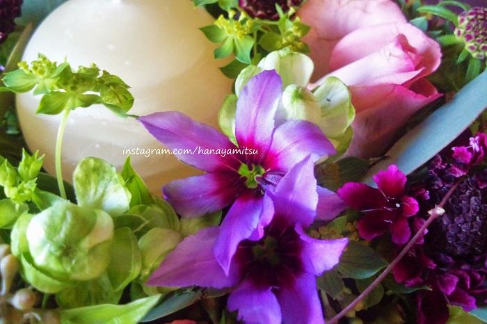 ガラス細工のような質感の花びらが印象的な花です。ピンクから紫への、絵具を水に溶かしたようなグラデーションが印象的です。顔を近づけるとほのかに甘い香りがします。  複雑な色と香りの良さの魅力的から、贈られた方から名前を尋ねられることの多い花です。