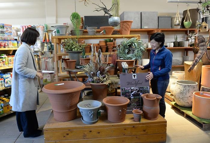 「ウィッチフォードの鉢」が大好きです。渋谷園芸ではウィッチフォードの鉢を種類豊富に販売していて、ウィッチフォードの鉢を使って寄せ植えを作らせてもらうこともあり、テンションが上がります。(笑)