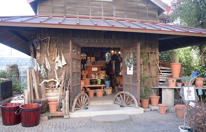 渋谷園芸練馬本店には、ウィッチフォードを展示販売するこんな素敵な小屋もあるんです。  (世界中のガーデナーの憧れともいわれるウィッチフォードの鉢ですが、どんな所が魅力なのでしょう?)  職人さんがひとつひとつ作っているので、同じように見えて実は同じものがないオリジナルで、鉢の底を見ると職人さんのサインが入っているんですよ。  ウィッチフォードの鉢で植物を育てると根の張り具合が抜群に良く、植物が生き生きと育つことを実感できるので感動します。
