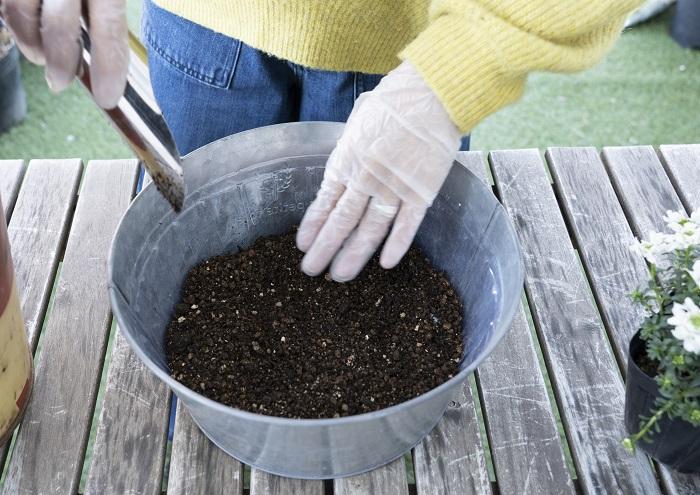 イメージした感じをもとに、鉢底石の上に土を入れていきます。