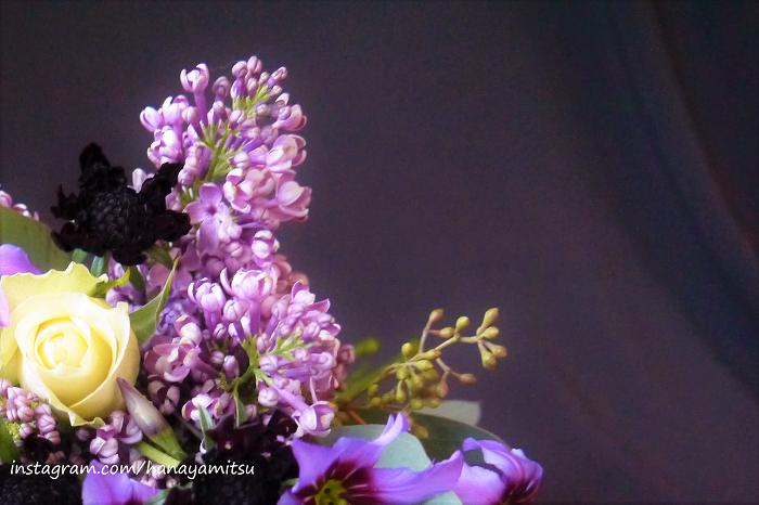 ■学名:Syringa vulgaris  ■科名:モクセイ科  ■分類:落葉高木  フランス語ではLilas(リラ)。薄紫や白、ピンクの小花の集合体を房状に咲かせます。甘く優しい芳香の花を、枝の先にたわわに咲かせる姿が印象的です。露地で花が咲くのは5~6月。切り花では12月頃から出回ります。  可憐な花姿と香りの良さから、普遍的な人気の春の花です。