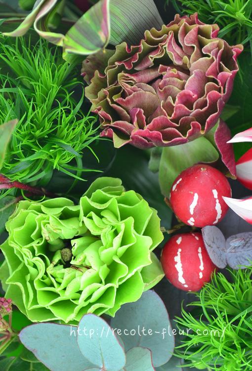 大人っぽい赤系の小輪系ラナンキュラス。花びらがフリルのような咲き方です。