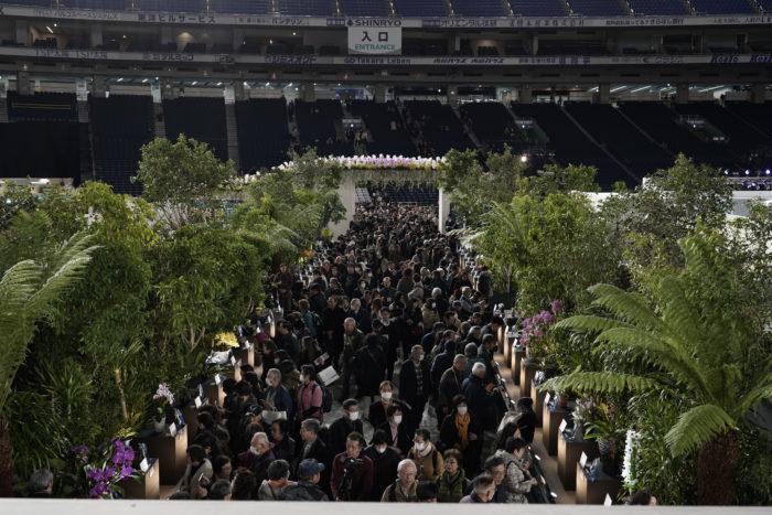 シンボルツリーのトキワマンサクは石垣のようなモニュメントの上にそびえ立ちモニュメントの階段を上ると会場全体が見渡せる展望スペースになっています。らん展初日から大勢のお客様で賑わっていました。この展覧会の人気が伺えます。