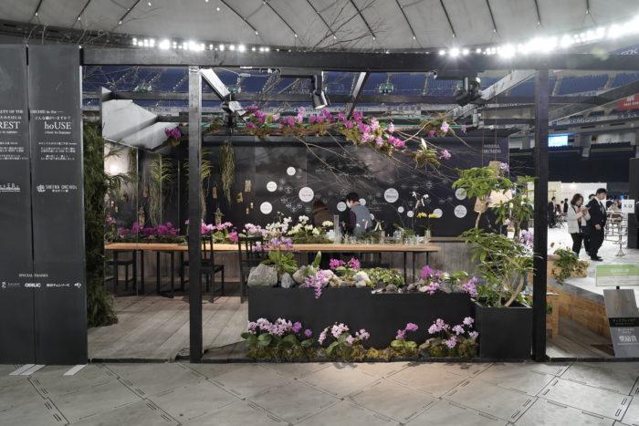椎名洋ラン園さんは、蘭を通して新しい飾り方やセンスのいい飾り方を提案。