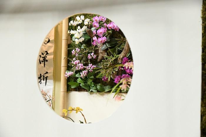 丸窓の中から眺める、部屋の中の花。家の中から見て楽しめるように庭をつくるというのはよくありますが、これは外から中へと逆向きの視線。壁や家具などを額縁に見立てて植物を楽しむというヒントになりそうです。