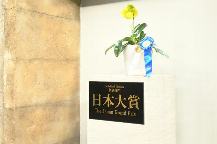 世界最大級の審査総数を誇る、世界らん展、会場に集まった花の総数は約3000種、株数は10万株、250万輪以上、審査申請総数は928の作品の中から日本大賞、各賞が世界各国から集まった164名の審査員によって選ばれました。  部門は5つの部門に分かれ、部門1「個別部門」部門2「フレグランス部門」部門3「ディスプレイ部門」部門4「フラワーデザイン部門」部門5「ハンギングバスケット部門」の中から各賞を決定します。  日本大賞は「個別部門」の中から選ばれ、今年は桜井一様(71)が出品された「パフィオペディラム エメラルドゲート グリーングローブ」が数多くの作品の中から選ばれました。審査員長のスーザン・ウェッドガートナー氏からの、コメントでは「数多くの出品がある中でこの作品が選ばれたポイントは、花弁に見られるエメラルドグリーンと深い黄色が美しい色彩をうみだしていること、そして見事に整った花の形です。日本大賞にふさわしい逸品が選ばれたと思います。」とお祝いの言葉を頂きました。